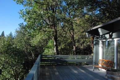View of deck and trees